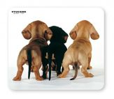 TUCANO MPDEL-202 :: Mouse pad, Puppies Back